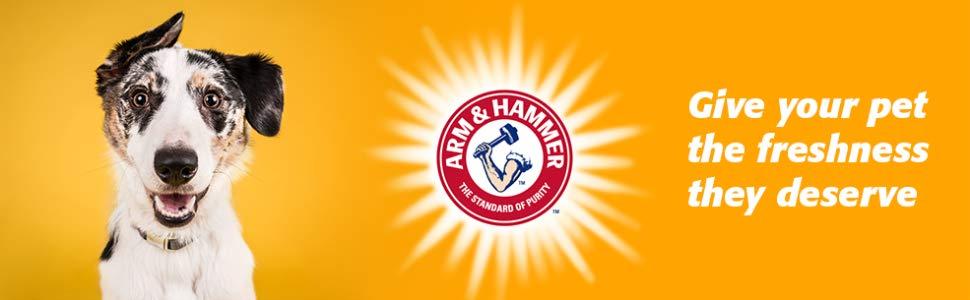 Pet Mate 42036 Arm & Hammer Large Sifting Litter Pan.