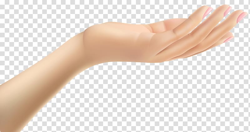 Thumb Hand Arm , Female Hand transparent background PNG clipart.
