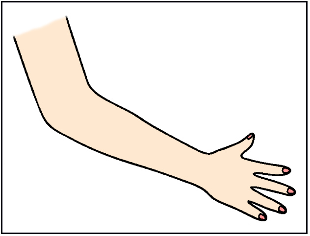 Arm Clipart.