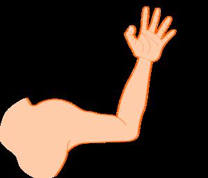 Clip Art Cartoon Arms Clipart.