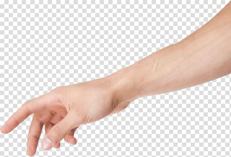 Arm , arm transparent background PNG clipart.