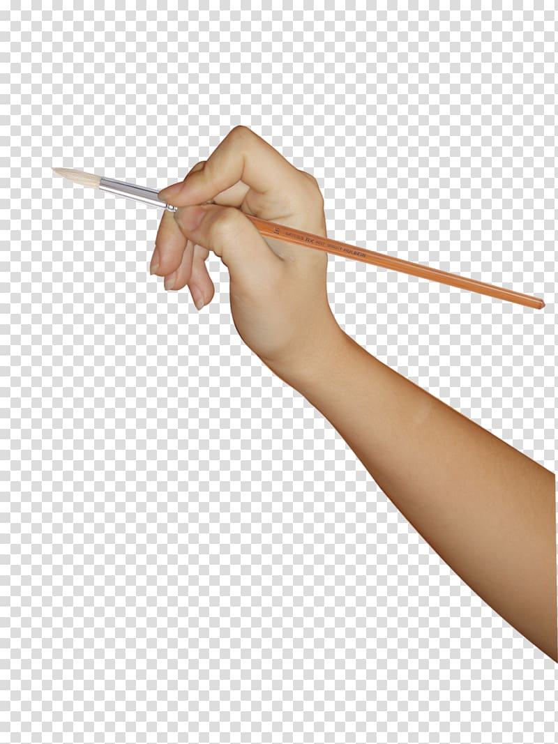 Person holding color pencil while drawing, Upper limb Hand.