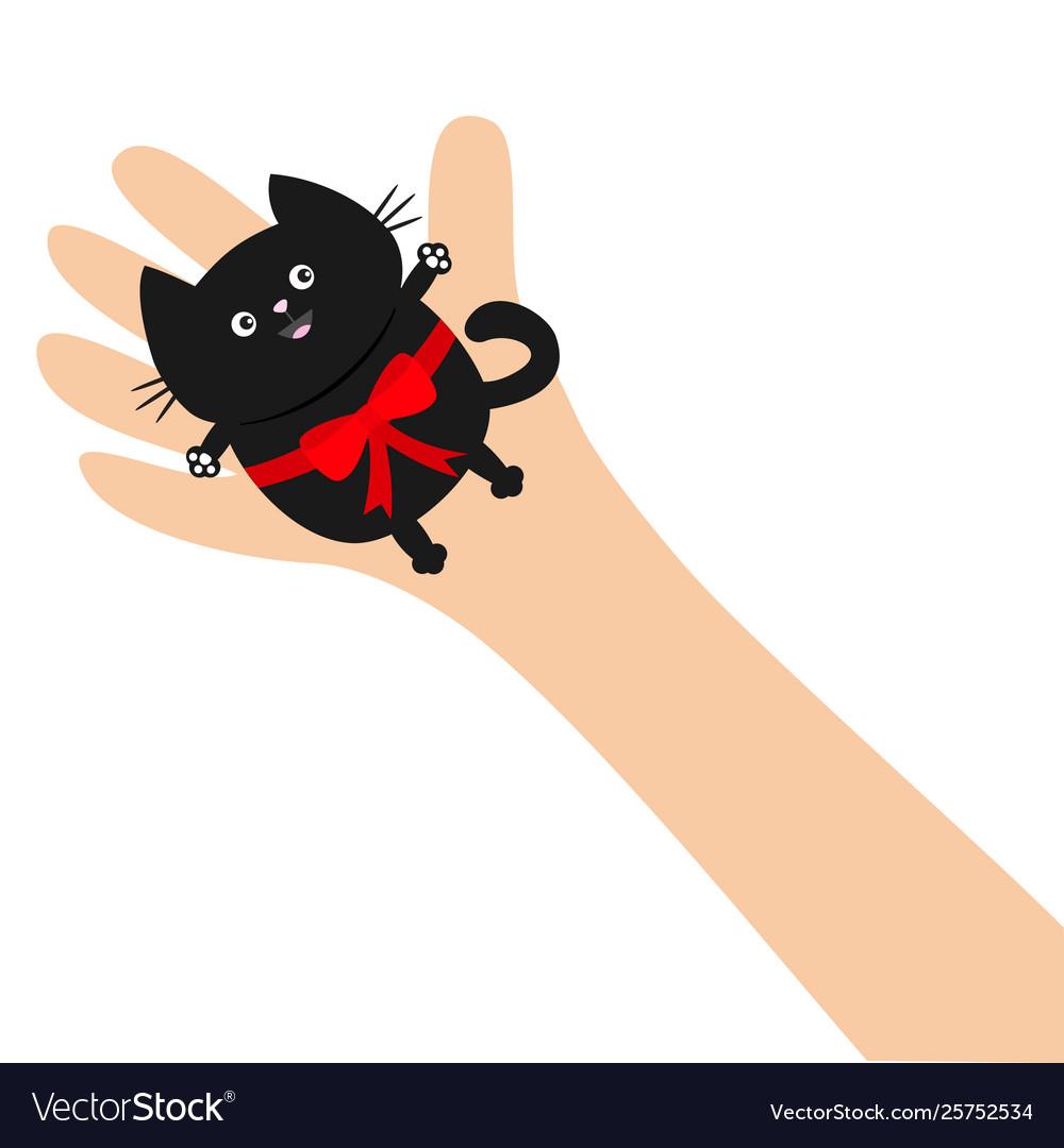 Hand arm holding black cat with red bow ribbon.