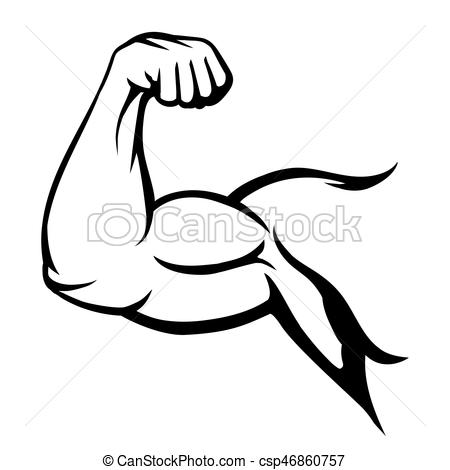 Arm muscle clipart 5 » Clipart Station.