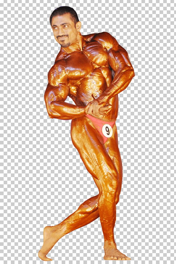 Female Bodybuilding Physical Fitness Human Body Muscle PNG.