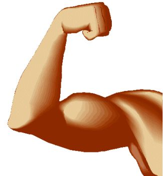 Muscle Arm Clipart.