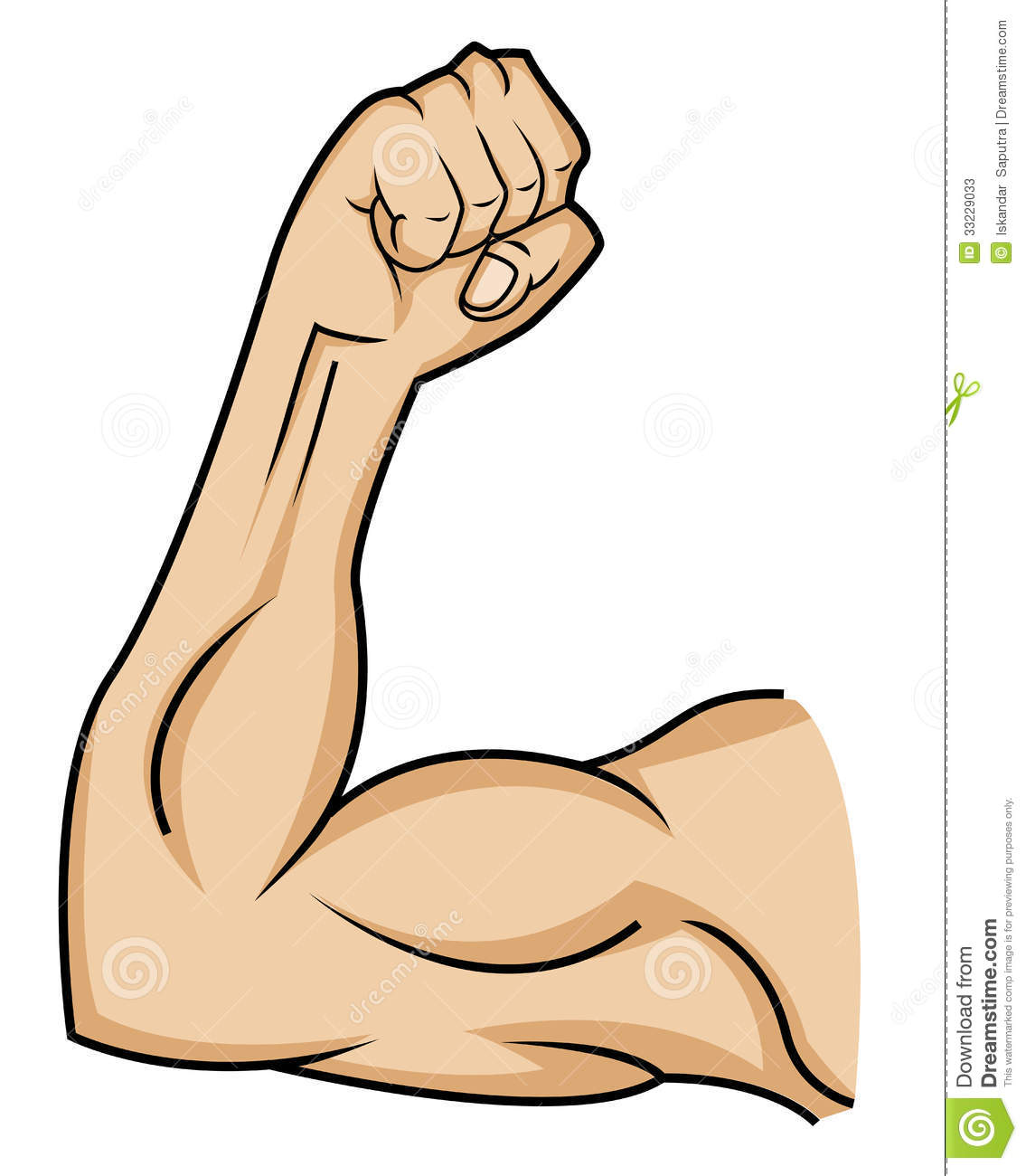 Clipart arm muscle.