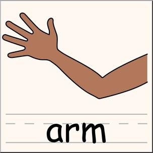 Clip Art: Parts of the Body: Arm Color I abcteach.com.