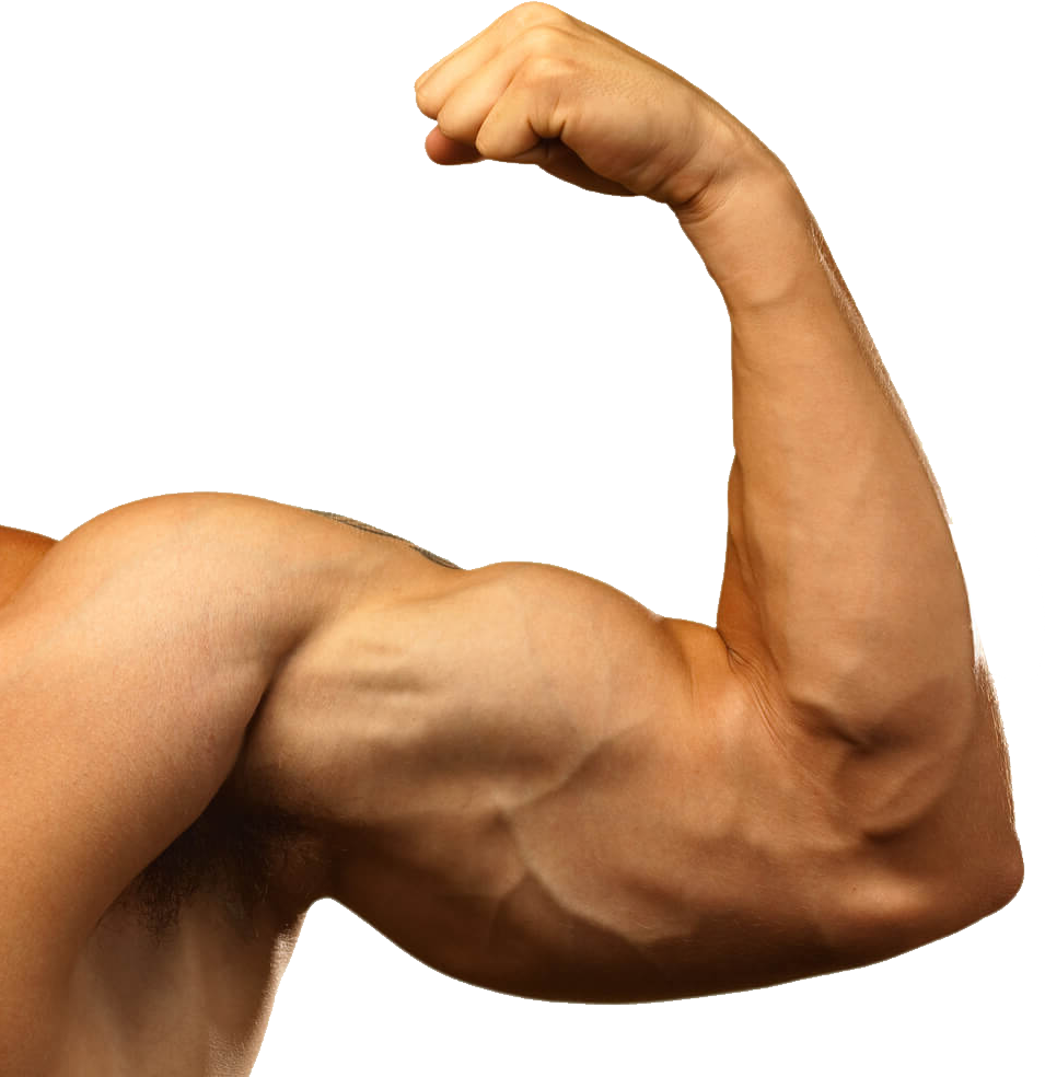 Muscle Arm PNG Background Images.