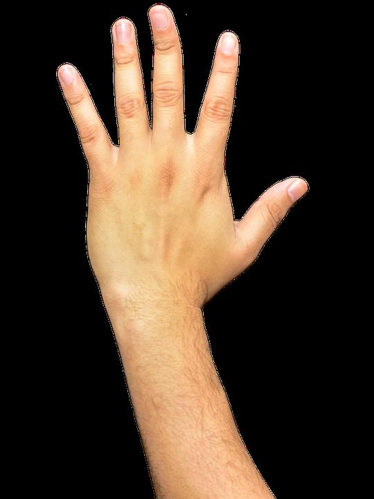Hands Fingers Arm.