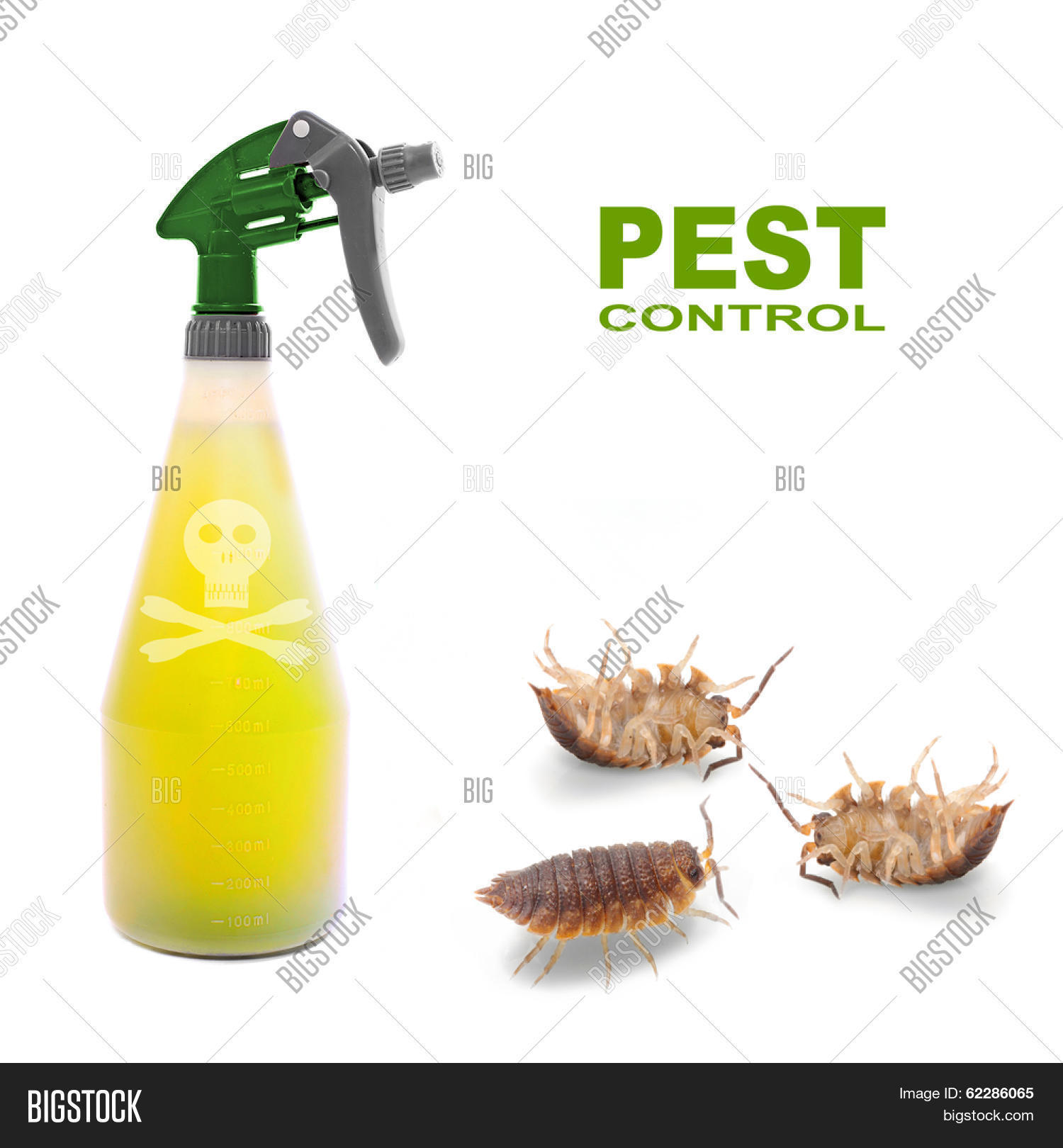 Plastic sprayer with insecticide and The Pill.