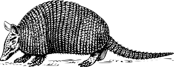 Armadillo clip art Free vector in Open office drawing svg ( .svg.