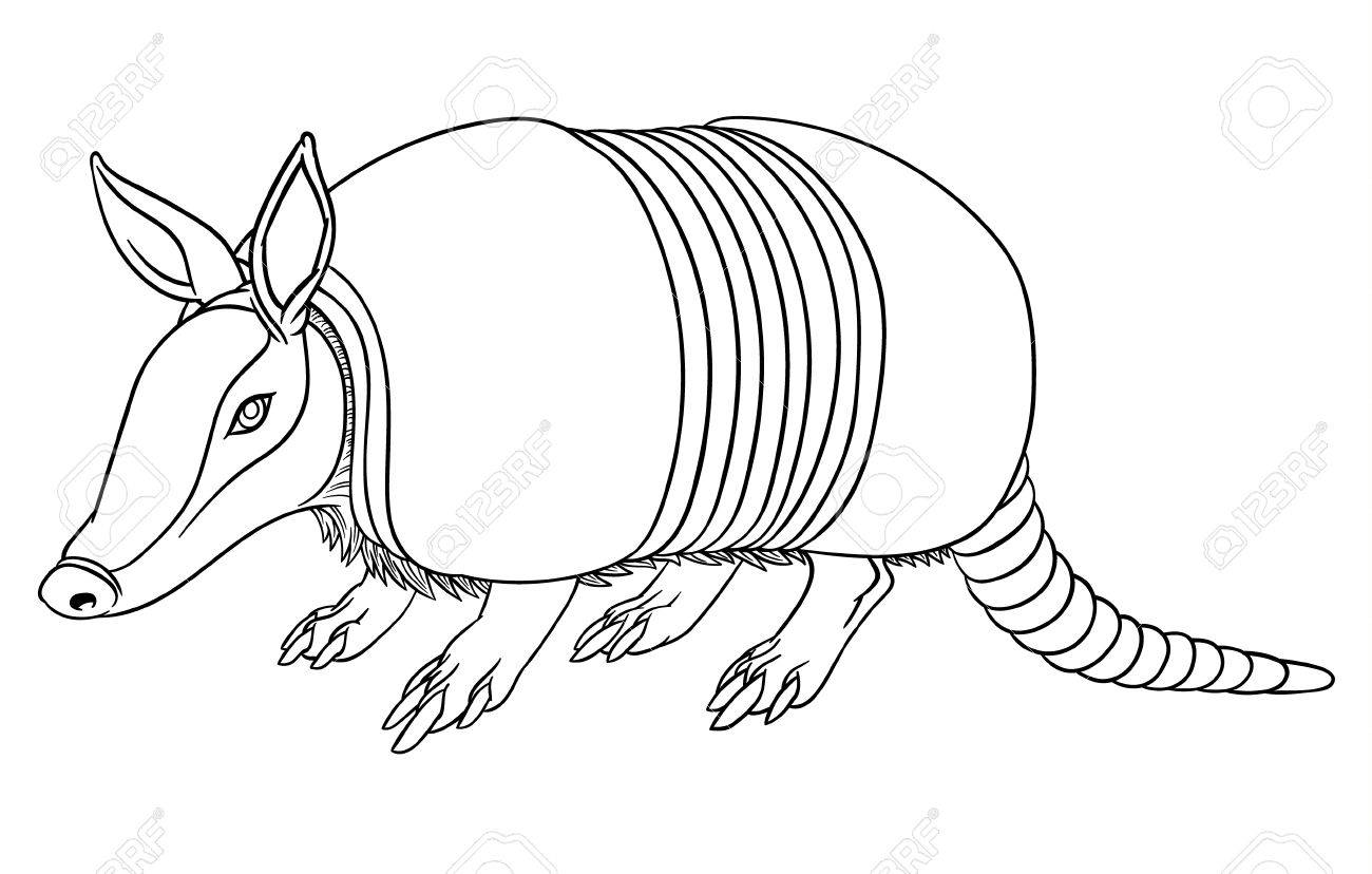 Armadillo Clipart Black And White (92+ images in Collection) Page 1.