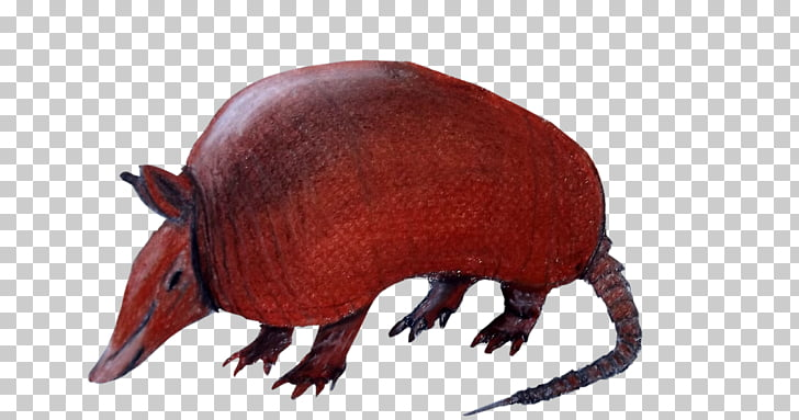 Armadillo Drawing Silhouette, cola PNG clipart.