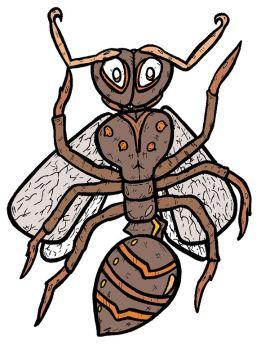 groundbug.