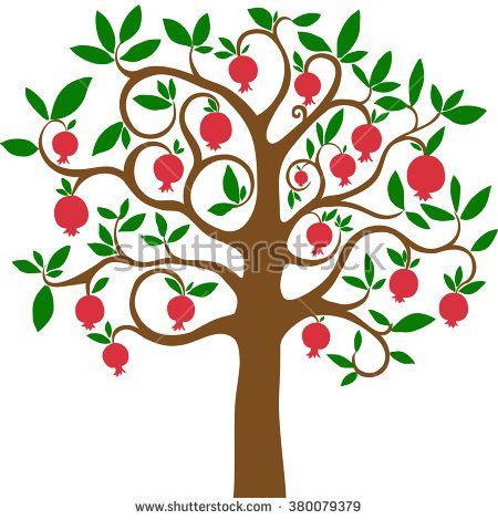 Pomegranate treetr.
