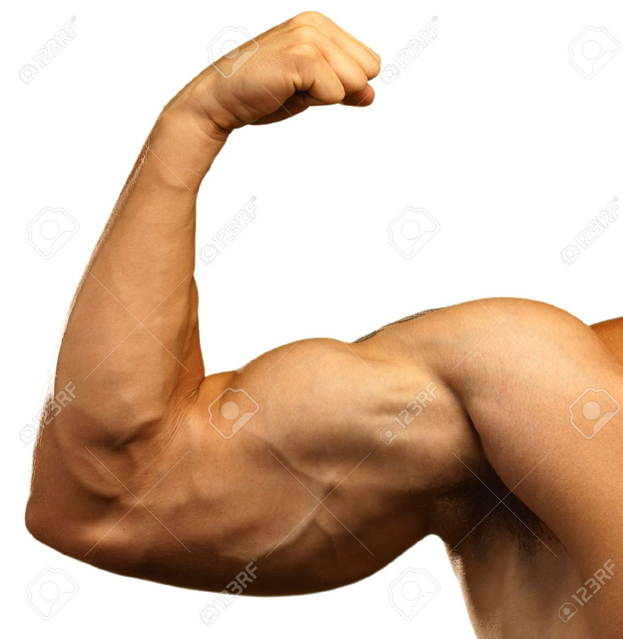 Muscle Arm PNG HD Transparent Muscle Arm HD.PNG Images..