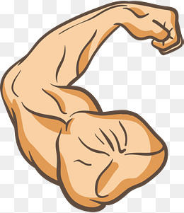 Arm Muscle PNG Images.