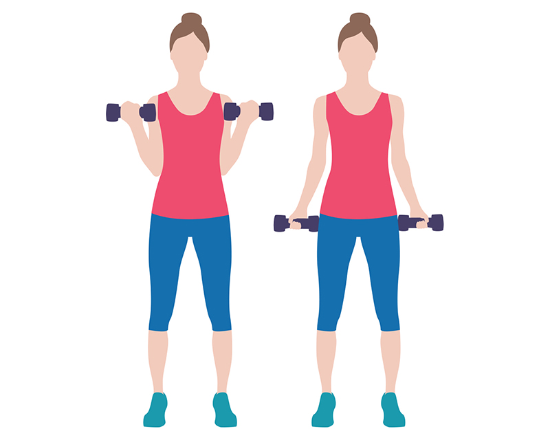 Bicep clipart dumbbell, Bicep dumbbell Transparent FREE for.
