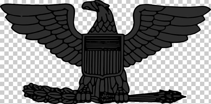Lieutenant Colonel Military Rank United States Marine Corps Rank.