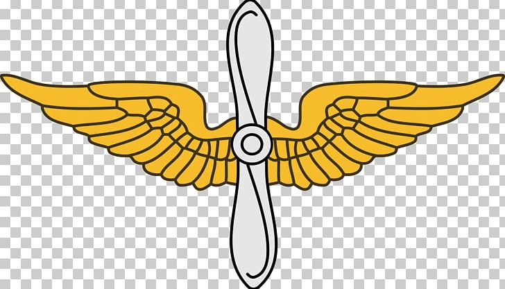 United States Army Aviation Branch United States Army Branch.