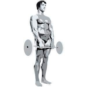 Arnold clipart bodybuilding.