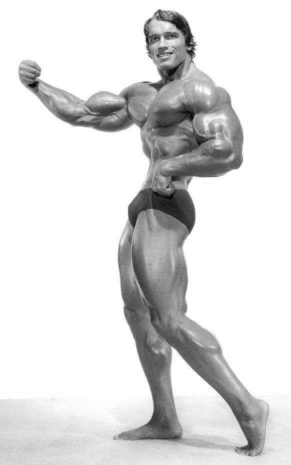 Arnold Schwarzenegger Png (108+ images in Collection) Page 1.