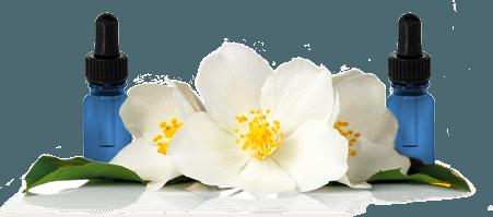 Formação Online em Aromaterapia.