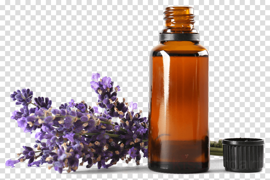 Essential Oil, Aromatherapy, Oil, transparent png image & clipart.