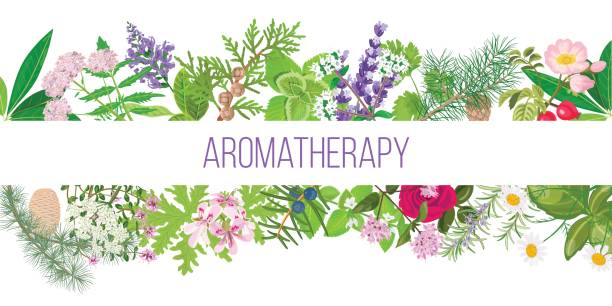 Best Aromatherapy Illustrations, Royalty.