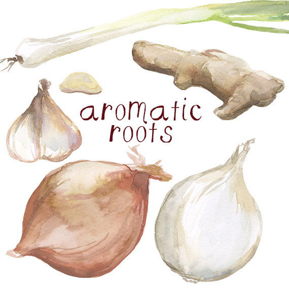 Watercolor Cooking Clip Art Garlic Onion Green Onion Ginger.