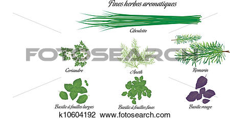 Clipart of Aromatic herbs poster french k10604192.
