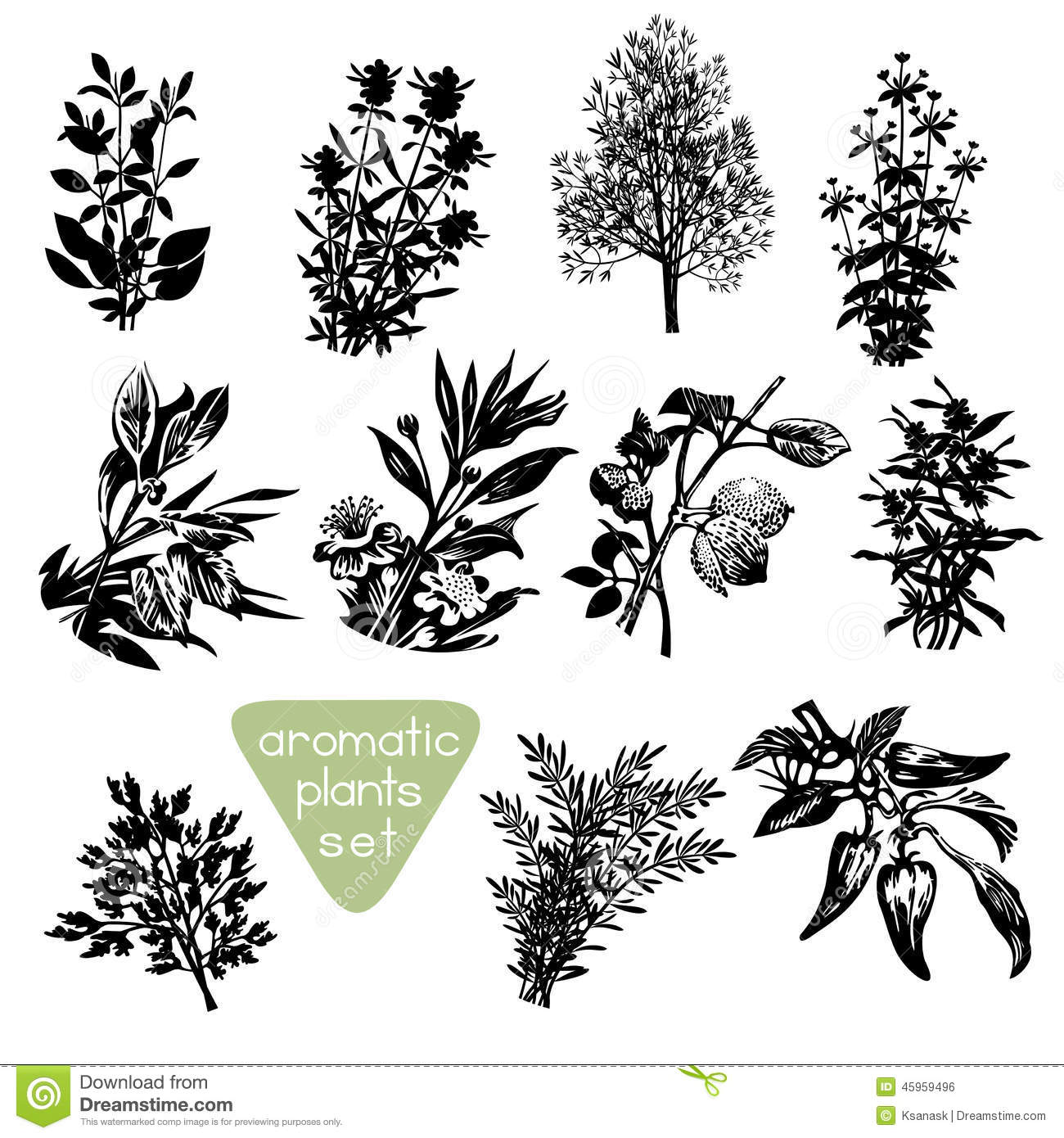 Aromatic Herbs Hand Drawn Silhouettes Stock Vector.