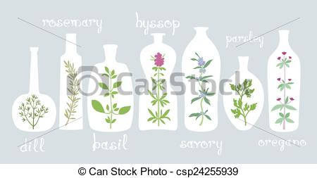 Vectors of Aromatic Plants in Bottles.