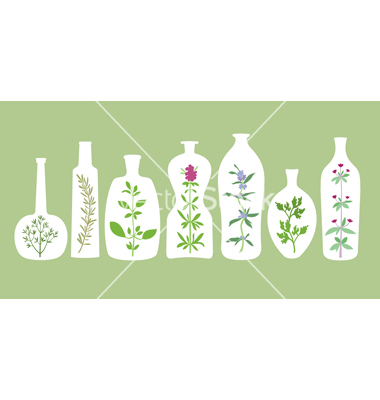 Aromatic plants and bottles silhouettes vector by KsanasK.