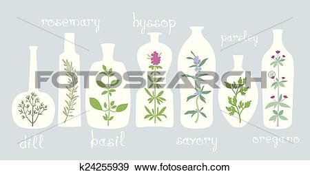 Clip Art of Aromatic Plants in Bottles k24255939.