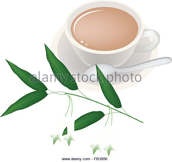 Solomons Lily Stock Photos & Solomons Lily Stock Images.
