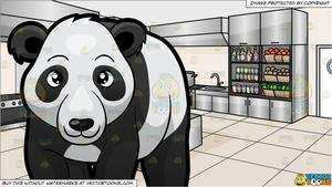 A Panda Bear Walking Around At The Zoo and A Kitchen Restaurant Background.