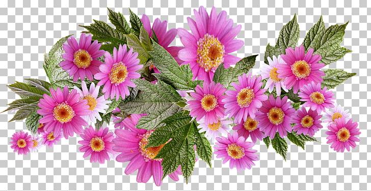 Gráficos de flores, paleta de gráficos de red portátiles.