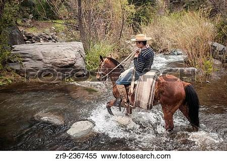 """Stock Image of """"Chilean cowboy (arriero) rides his horse across a."""