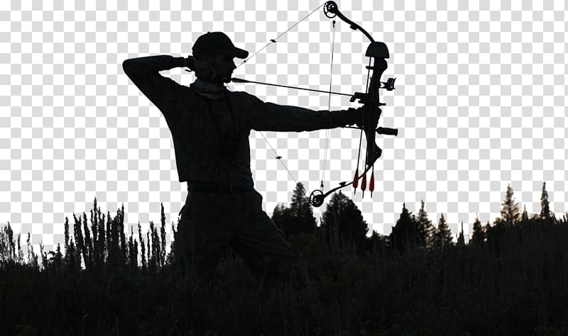 Archery Bow and arrow Bowhunting Deer hunting, archery.