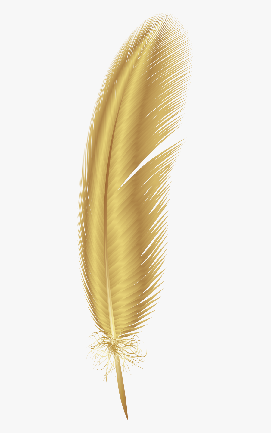 Transparent Background Gold Feather Png , Free Transparent.