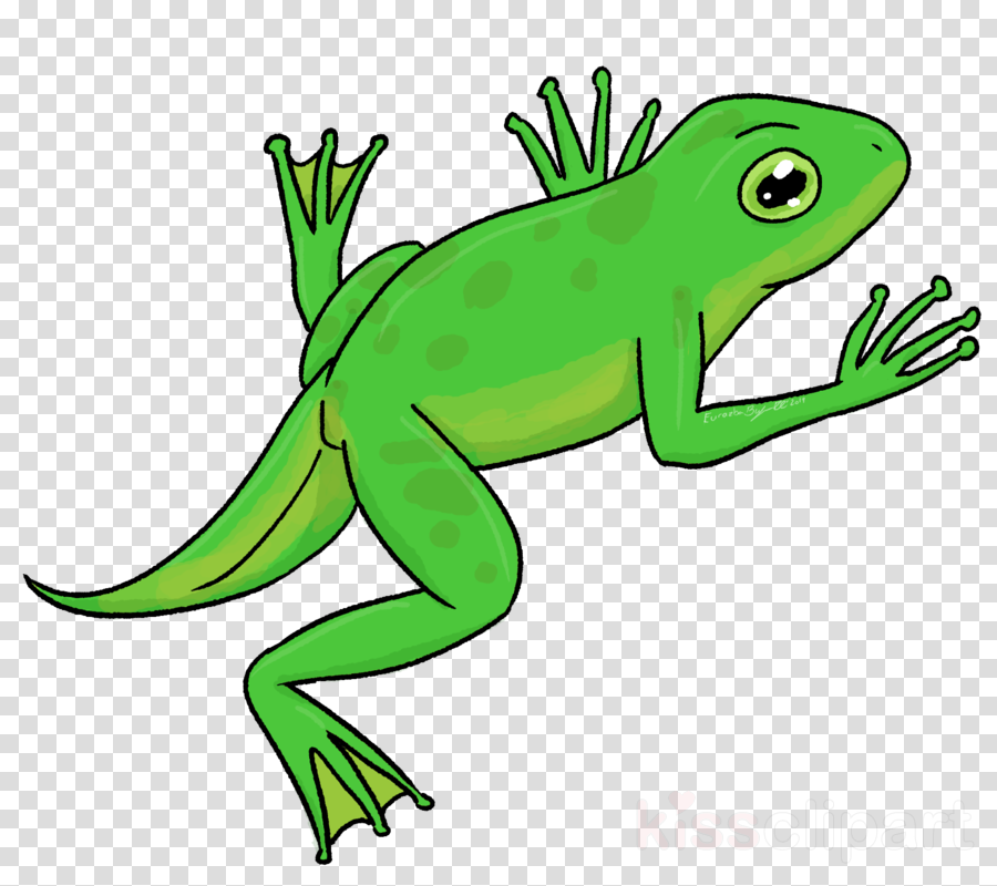 green lizard european green lizard reptile clip art clipart.
