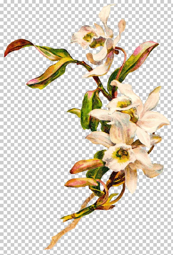 Flower Art Nouveau Art Deco , victorian, white petaled.