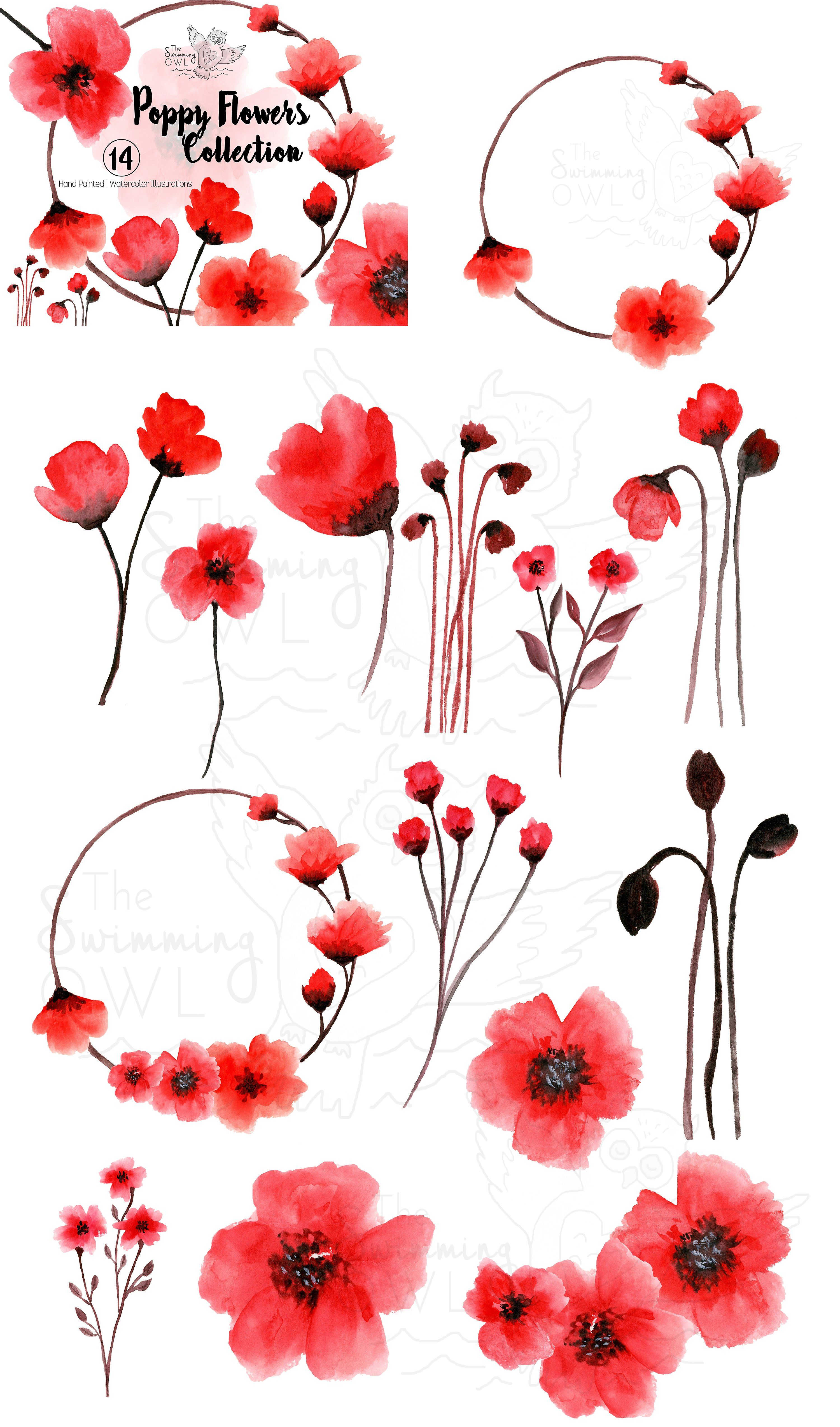 Poppy Flowers Watercolor Clipart #Vibrant#hand#printable.