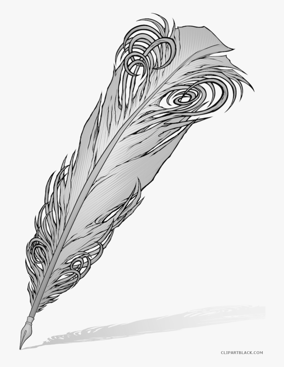 Peacock clipart quill, Peacock quill Transparent FREE for.