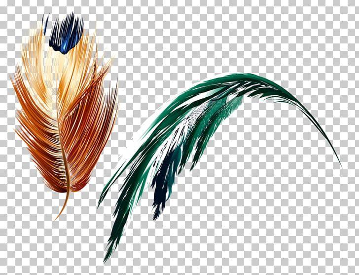 Feather Art Light PNG, Clipart, Abstract Art, Animals, Art.