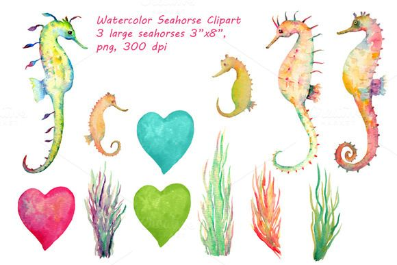 Watercolor Seahorse Clipart by Corner Croft on Creative.