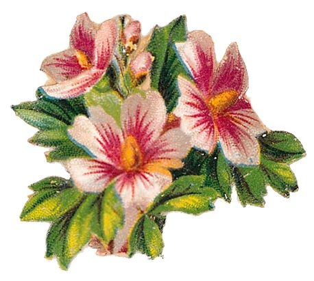 Art Images Of Flowers.