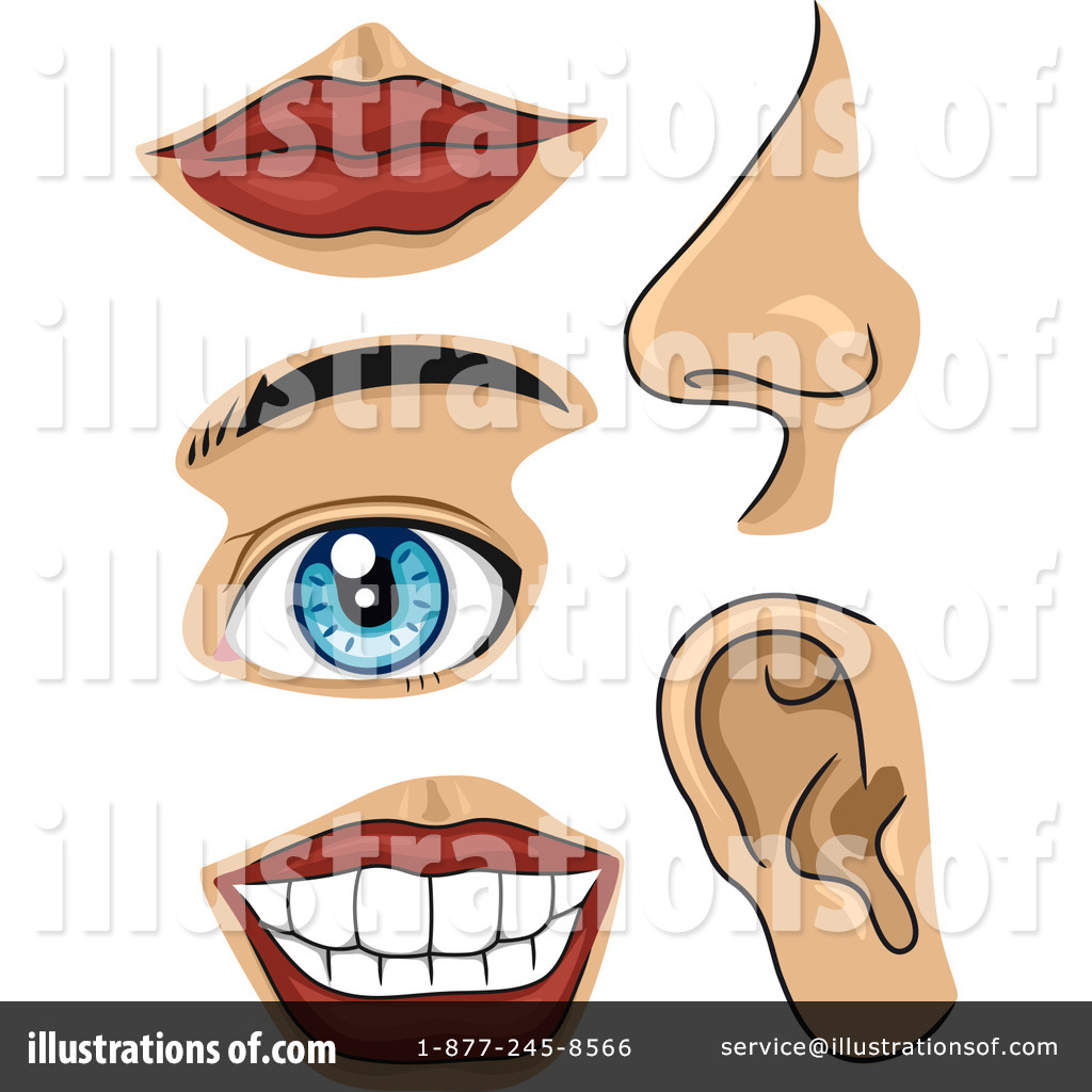 Body Parts Clipart #1150794.